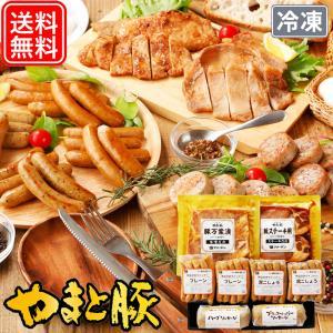 NSG-D 無塩せき ウインナー 味付け肉 詰め合わせ ギフト | プレゼント ソーセージ 詰め合わせ ウィンナー やまと豚 豚肉 やま|frieden-shop