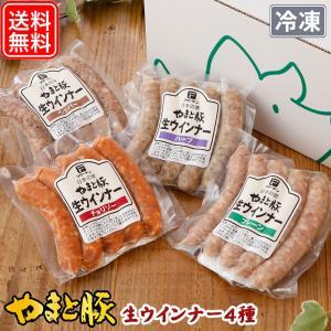 やまと豚生ウインナー4種お試しセット NS-AF |やまと豚 豚肉 やまと 豚 お試しセット ウィンナー お取り寄せグルメ ソーセージ 生ソーセージ|frieden-shop