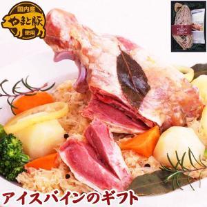 IB-35 やまと豚アイスバイン スープ付き フリーデンギフト | [冷蔵] プレゼント 詰め合わせ やまと豚 豚肉 豚 ギフト お取り寄せグルメ お肉 ギフトセット|frieden-shop