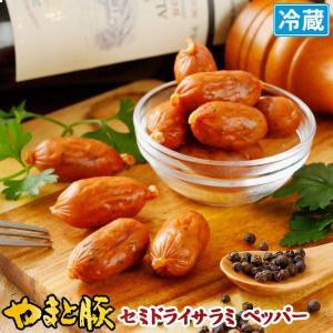 やまと豚 セミドライサラミ mini ブラックペッパー 70g |  [冷蔵] サラミ サラミソーセージ カルパス おつまみ ソーセージ オードブル 取り寄せ 肉 お肉 珍味|frieden-shop