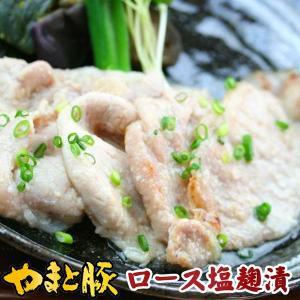 やまと豚 塩糀漬 (ロース薄切り) 200g(冷凍)味付け肉 | [冷凍] 豚肉 豚 お取り寄せグルメ お取り寄せ グルメ 豚ロース 食品 食べ物 冷凍食品 味付き 焼肉|frieden-shop
