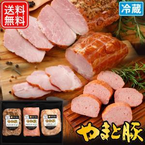 お中元 2021 味・倭セット ギフト PFS-38 | [冷蔵] 送料無料 御中元 高級 ギフトセット ハム ソーセージ ウインナー 詰め合わせ 食べ物 肉 内祝い 食品 お肉|frieden-shop