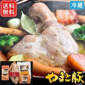 お中元 2021 アイスバイン 洋風煮込みセット ギフト IBS-50 | [冷蔵] 送料無料 御中元 高級 ギフトセット ハム ハムギフト お取り寄せ 食べ物 肉 食品 お肉|frieden-shop