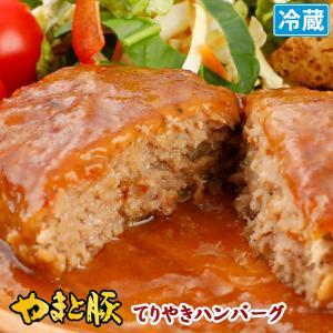 おうちDEレストラン てりやき ハンバーグ 160g | [冷蔵] ハンバーグ ハンバーグステーキ ギフト レトルト 高級 惣菜 お惣菜 肉 お肉 牛肉 豚肉 お取り寄せ|frieden-shop