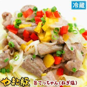 やまと豚 旨てっちゃん ねぎ塩 160g | [冷蔵] やまと豚 豚肉 やまと 豚 お取り寄せグルメ お取り寄せ グルメ 食品 食べ物 肉 お肉 ホルモン おつまみ 味付き|frieden-shop