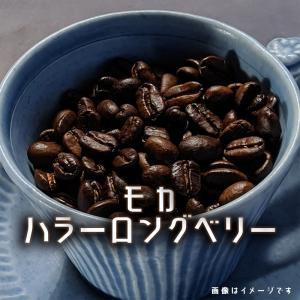 コーヒー豆 エチオピア モカ ハラ―ロングベリー 200g frigoles