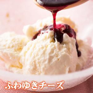 レアチーズケーキ ふわゆきチーズ(ブルーベリーソース付)1個(冷凍用)|from-zao