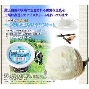 お中元アイス フロム蔵王HybridスーパーマルチアイスBOX24・アイスクリームセット ice cream 贈り物 アイス 送料無料|from-zao|02