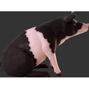 ゆかいな豚さんP&B FRPアニマルオブジェ 即納可|frps|03
