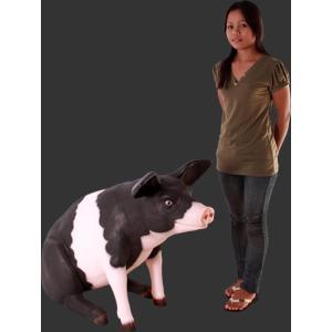 ゆかいな豚さんP&B FRPアニマルオブジェ 即納可|frps|06