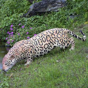 FRPアニマルオブジェ 水辺のジャガー 【即納可】|frps