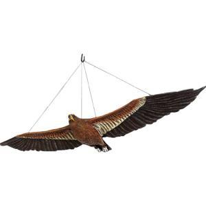 ウェッジテイルドワシ「くさび型の尾をもつ鷲」 FRPアニマルオブジェ frps
