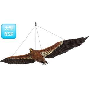 ウェッジテイルドワシ「くさび型の尾をもつ鷲」 FRPアニマルオブジェ frps 03