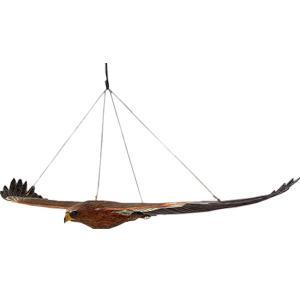 ウェッジテイルドワシ「くさび型の尾をもつ鷲」 FRPアニマルオブジェ frps 04