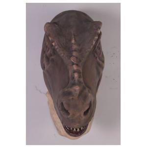 FRP恐竜オブジェ ド迫力の頭部[T-Rex]|frps|06
