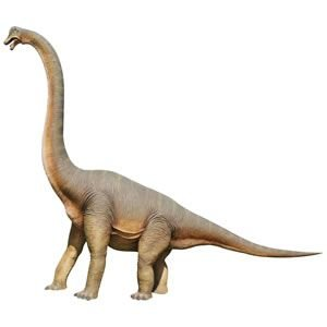 FRP恐竜オブジェ 立ち向かうブラキオサウルス|frps