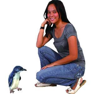 フェアリーペンギン FRPアニマルオブジェ 即納可|frps|04