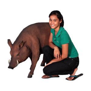 いのしし・猪 FRPアニマルオブジェ|frps|07