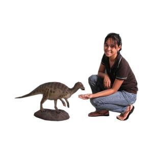 ベイビーイグアノドン FRP恐竜オブジェ 即納可|frps|06