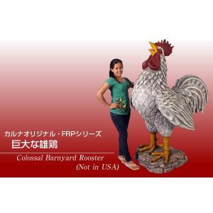 巨大な雄鶏 FRPアニマルオブジェ|frps|02