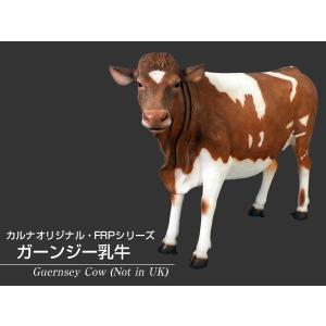 ガーンジー乳牛 FRPアニマルオブジェ|frps|02