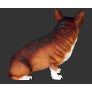 おすわりコーギー犬 FRPアニマルオブジェ 即納可|frps|06