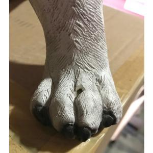 おすわりコーギー犬 FRPアニマルオブジェ 即納可|frps|10