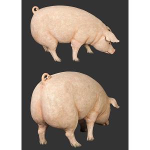 母さん豚 FRPアニマルオブジェ 即納可|frps|04