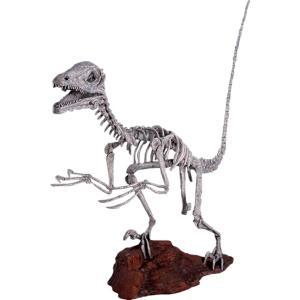 FRP恐竜オブジェ ディノニクス・スケルトン|frps