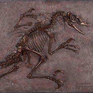 FRP恐竜オブジェ ヴェロキラプトルの化石(ブロンズ仕立て)|frps