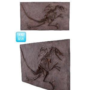 FRP恐竜オブジェ ヴェロキラプトルの化石(ブロンズ仕立て)|frps|03