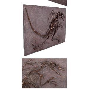 FRP恐竜オブジェ ヴェロキラプトルの化石(ブロンズ仕立て)|frps|04