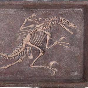 FRP恐竜オブジェ ヴェロキラプトルの化石|frps