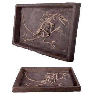 FRP恐竜オブジェ ヴェロキラプトルの化石 frps 04