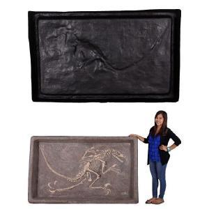 FRP恐竜オブジェ ヴェロキラプトルの化石 frps 05