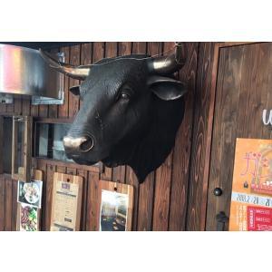 黒毛牛の頭部・壁掛け(ブロンズ) FRPアニマルオブジェ 即納可|frps|08