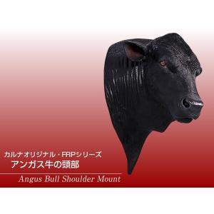 アンガス牛の頭部 FRPアニマルオブジェ|frps|02