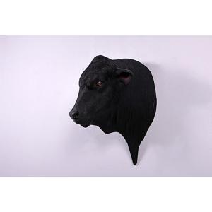 アンガス牛の頭部 FRPアニマルオブジェ|frps|05