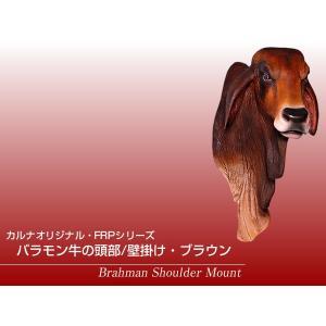 バラモン牛の頭部/壁掛け・ブラウン FRPアニマルオブジェ|frps|02