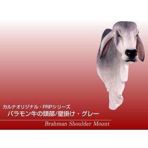 バラモン牛の頭部/壁掛け・グレー FRPアニマルオブジェ|frps|02