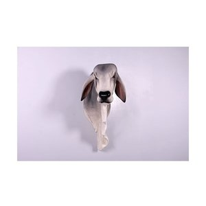 バラモン牛の頭部/壁掛け・グレー FRPアニマルオブジェ|frps|03