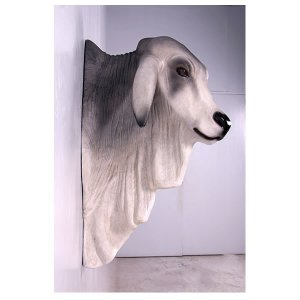 バラモン牛の頭部/壁掛け・グレー FRPアニマルオブジェ|frps|04