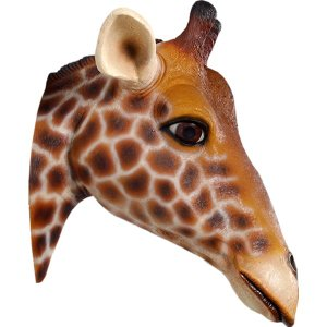 キリンの頭部・壁掛け FRPアニマルオブジェ|frps