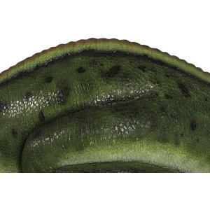 眠るムッタブラサウルス FRP恐竜オブジェ|frps|11