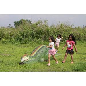眠るムッタブラサウルス FRP恐竜オブジェ|frps|17