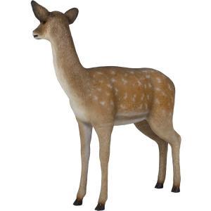 白い尻尾の雌鹿 FRPアニマルオブジェ|frps|06