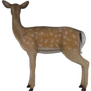 白い尻尾の雌鹿 FRPアニマルオブジェ|frps|07