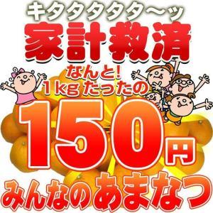 家計救済みんなの150円甘夏(あまなつ・訳あり・不揃い)1kg150円で20kgまでお好きなだけどうぞ♪