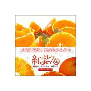 紅まどんな 3kg(贈答用)【送料無料】|fruit-sunny