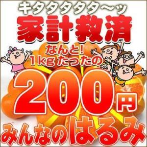 家計救済みんなの200円はるみ 訳あり・不選別・ご家庭用 fruit-sunny